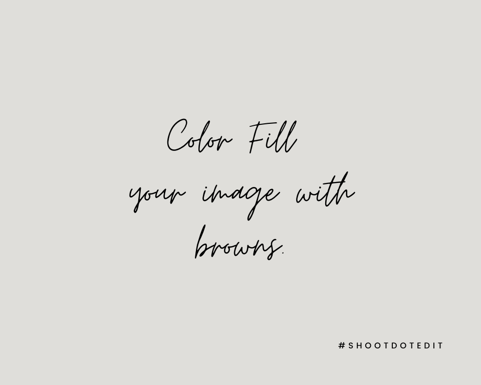 Infographic stating Color Fill your image with browns