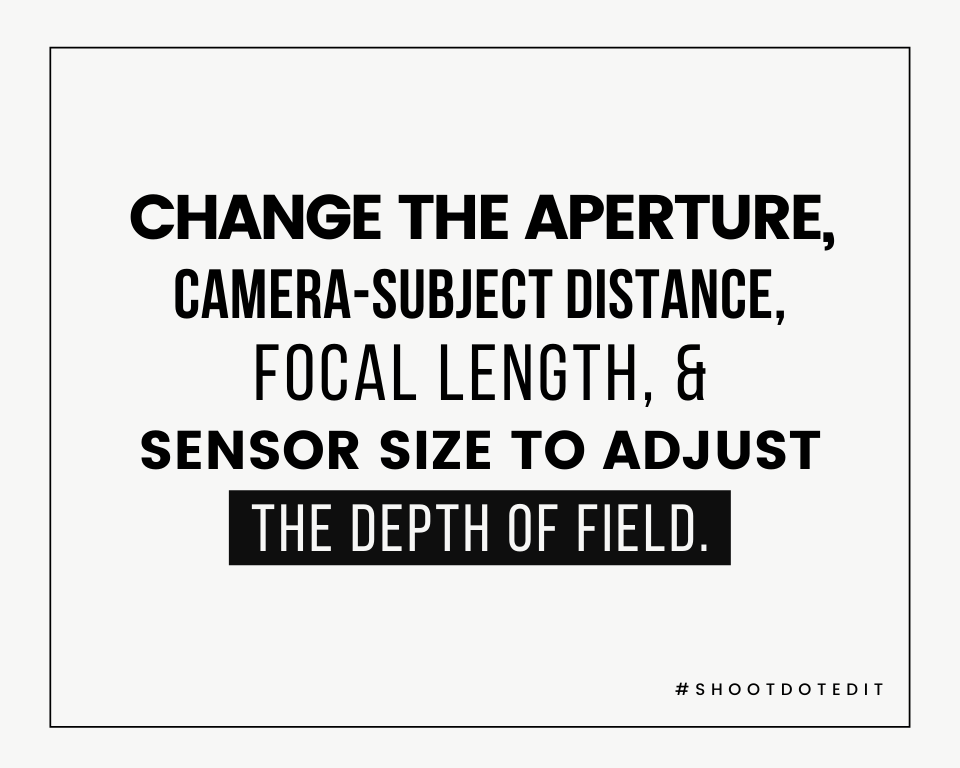Infographic stating change the aperture, camera-subject distance, focal length, & sensor size to adjust the depth of field