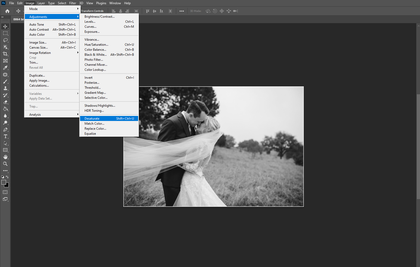 Converting the image to black and white in Photoshop